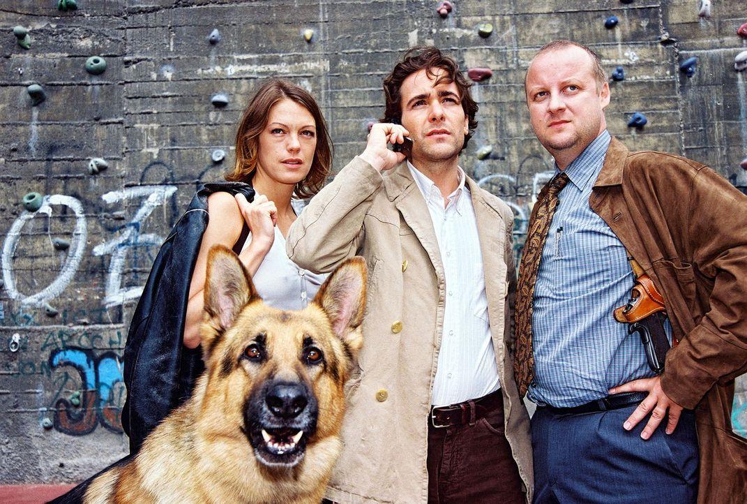 V.l.n.r.: Niki (Elke Winkens), Marc (Alexander Pschill) und Kunz (Martin Weinek) stoßen bei ihren Ermittlungen auf eine Gruppe von Freeclimbern, de... - Bildquelle: Sat.1