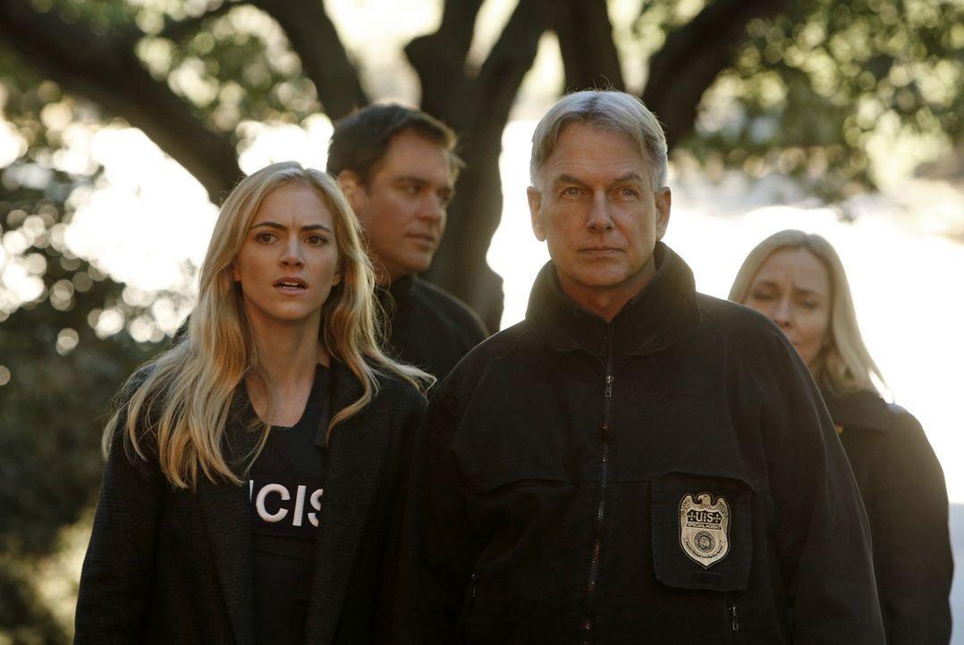 Eine gestohlene Drohne führt Bishop (Emily Wickersham, vorne l.) und Gibbs (Mark Harmon, vorne r.) zu dem skrupellosen Terrorist Parsa ... - Bildquelle: CBS Television