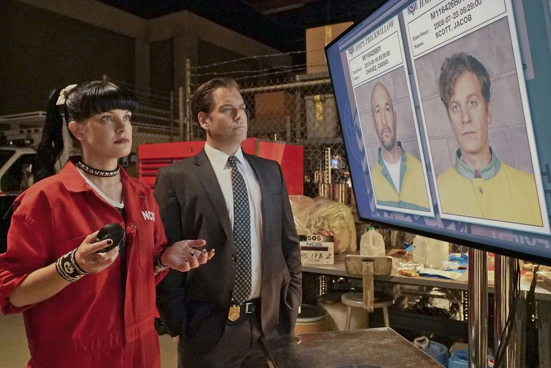 Versuchen alles, um die zwei entflohenen Häftlinge zu finden: Abby (Pauley Perrette, l.) und Tony (Michael Weatherly, r.) ... - Bildquelle: Bill Inoshita 2016 CBS Broadcasting, Inc. All Rights Reserved
