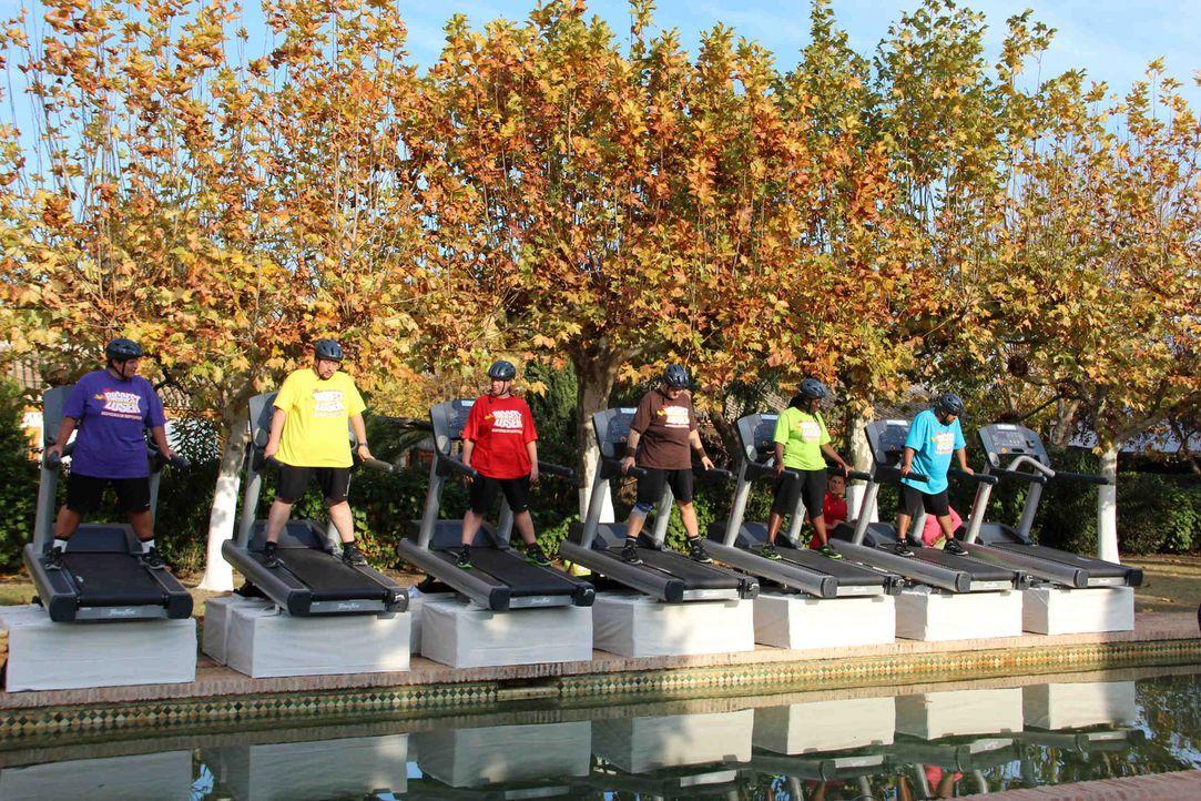Acht Laufbänder stehen am Rande des Pools. Die Kandidaten müssen so lange rennen, bis sie nicht mehr können. Wer aufhört zu laufen, fällt in de... - Bildquelle: Enrique Cano SAT.1