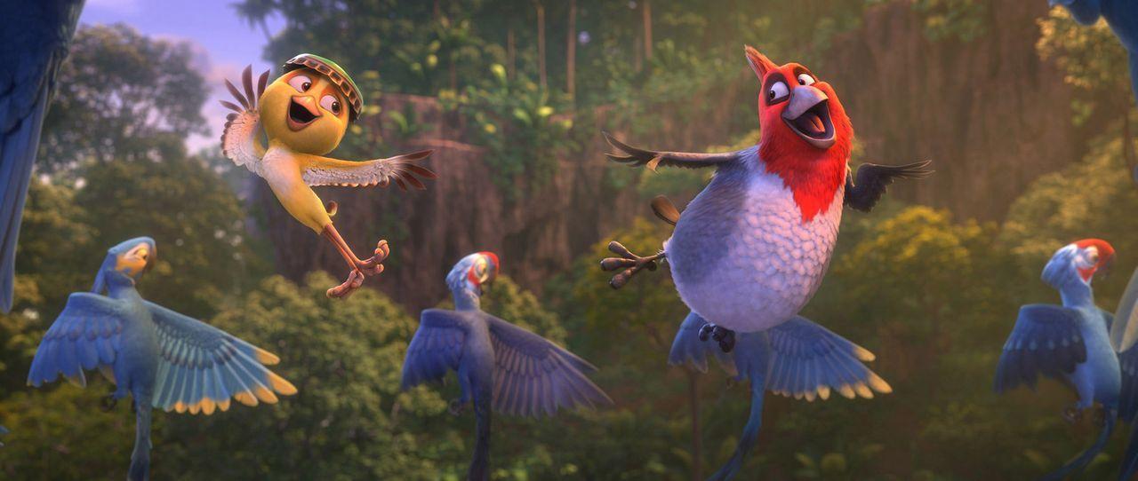 Zusammen mit Blu und seiner Familie machen sich auch Nic (l.) und Pedro (r.) auf zum Amazonas. Sie haben ein ganz besonderes Ziel: Sie brauchen drin... - Bildquelle: 2014 Twentieth Century Fox Film Corporation.  All rights reserved.