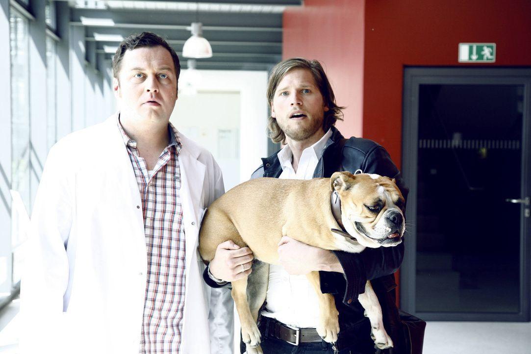 Jans (Sebastian Ströbel, r.) bester Freund Theo (Thomas Kornack, l.) liebt seine Zwillinge über alles und genießt seine Vaterrolle in vollen Züg... - Bildquelle: Vanessa Fuentes SAT.1