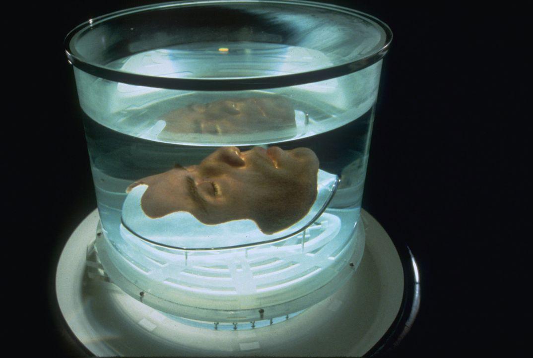 Um eine gefährliche Nervengasbombe entschärfen zu können, lässt sich FBI-Agent Sean Archer das Gesicht eines Terroristen transplantieren. Nicht... - Bildquelle: Touchstone Pictures