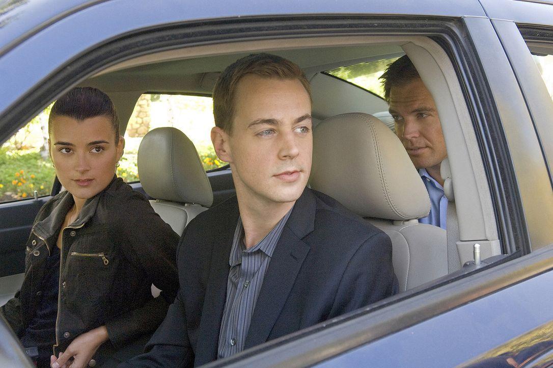 Ermitteln in einem neuen Mordfall: Ziva (Cote de Pablo, l.), DiNozzo (Michael Weatherly, r.) und McGee (Sean Murray, M.) ... - Bildquelle: CBS Television