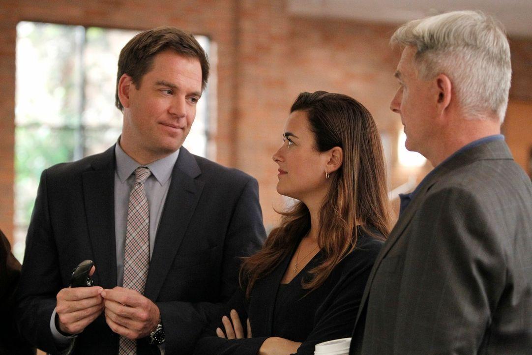 Ermitteln in einem neuen Mordfall: Tony (Michael Weatherly, l.), Ziva (Cote de Pablo, M.) und Gibbs (Mark Harmon, r.) ... - Bildquelle: CBS Television