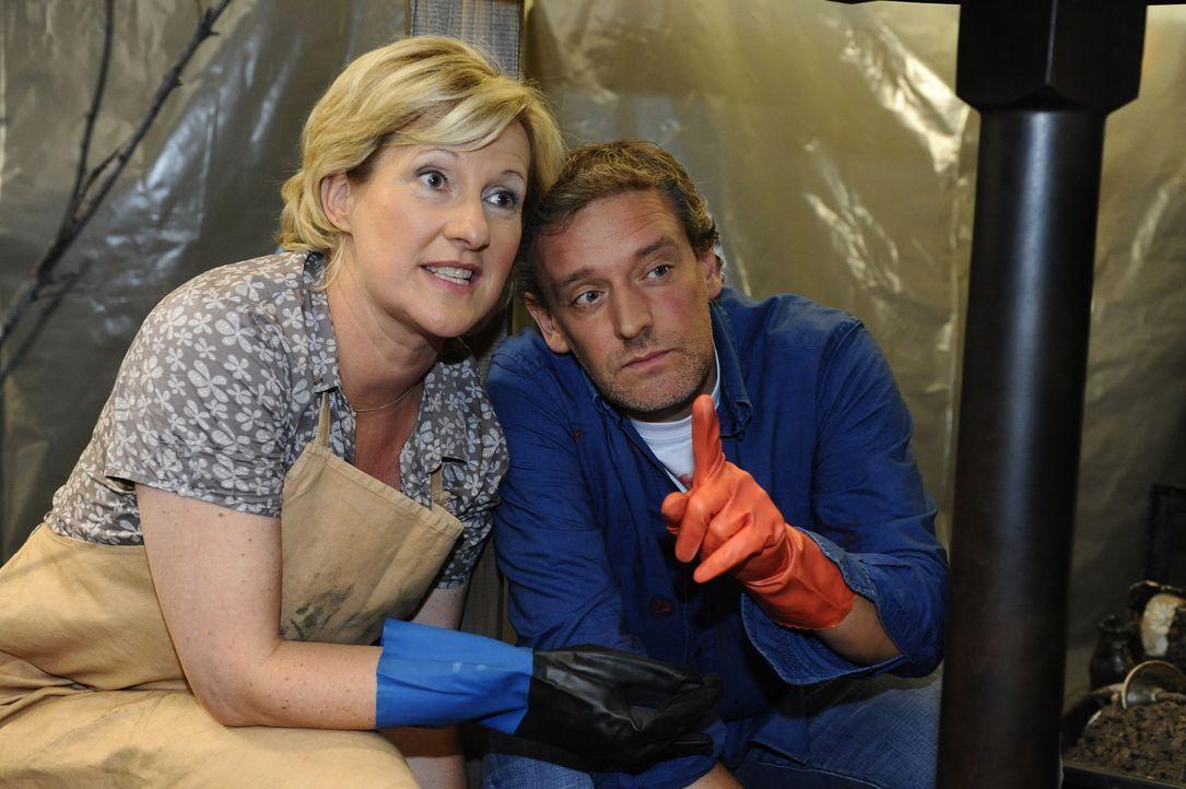 Haben viel zu tun: Susanne (Heike Jonca, l.) und Ingo (Wolfgang Wagner, r.) ... - Bildquelle: SAT.1