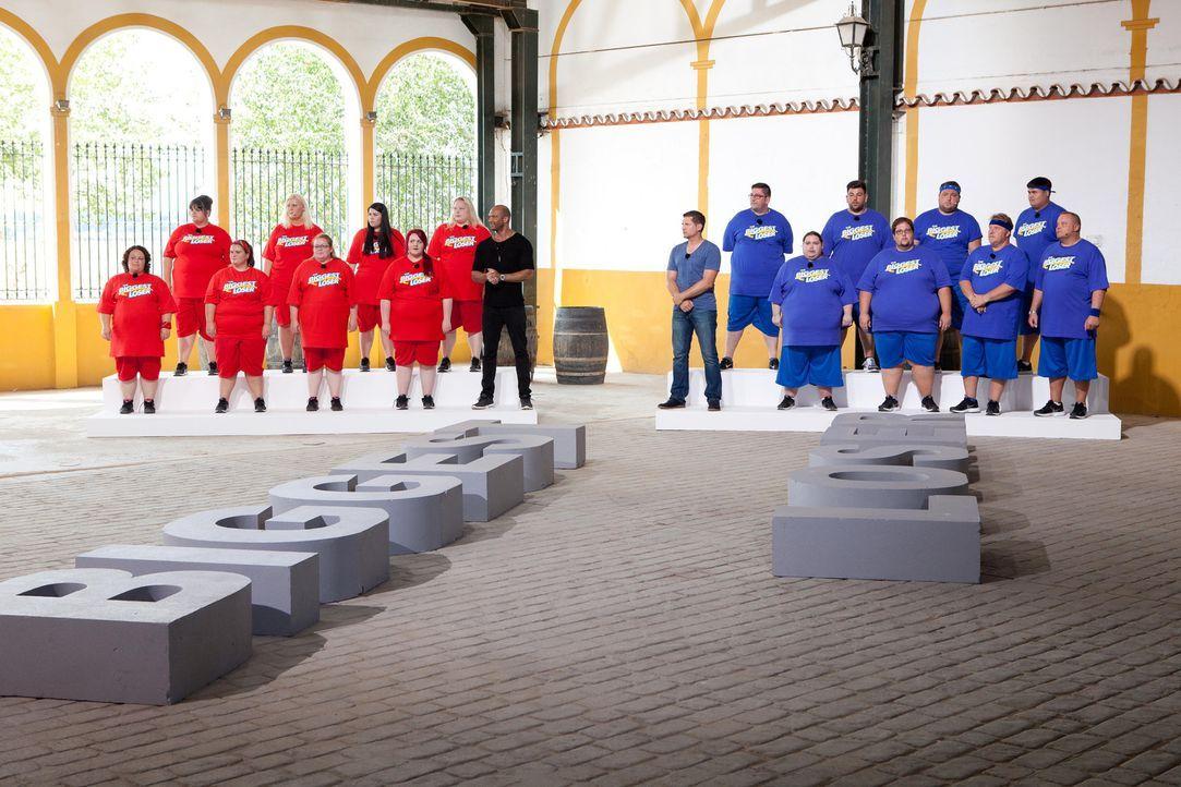 Das Wiegen ist angesagt und alle Kandidaten zittern vor dem Ergebnis - auch die Fitness-Coaches Ramin Abtin (M.r.) und Detlef D! Soost (M.l.) ... - Bildquelle: Enrique Cano SAT.1