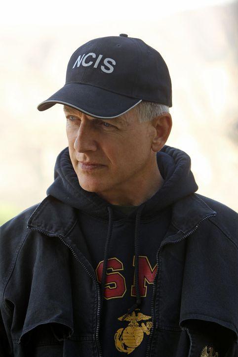 Auf der Suche nach Bodnar, um die Morde an Eli David und Jackie Vance zu vergelten: Gibbs (Mark Harmon) und sein Team ... - Bildquelle: CBS Television