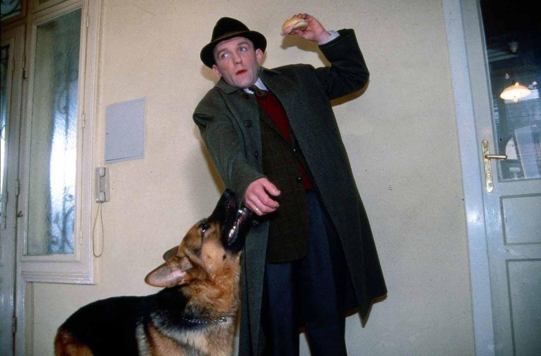 Kriminalassistent Ernst Stockinger (Karl Markovics), der vor Rex großen Respekt hat, wird von diesem bei einem Besuch in Mosers Wohnung freudig begr... - Bildquelle: Ali Schafler Sat.1