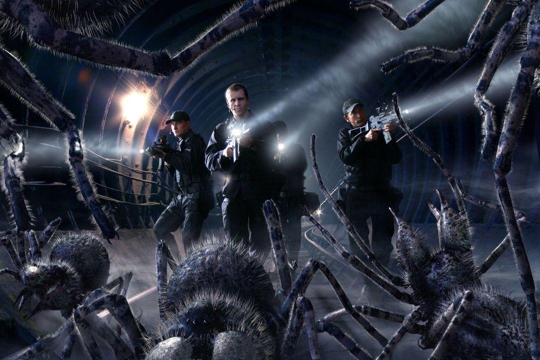 Das Militär im Kampf gegen die Riesenspinnen ... - Bildquelle: ITV Plc