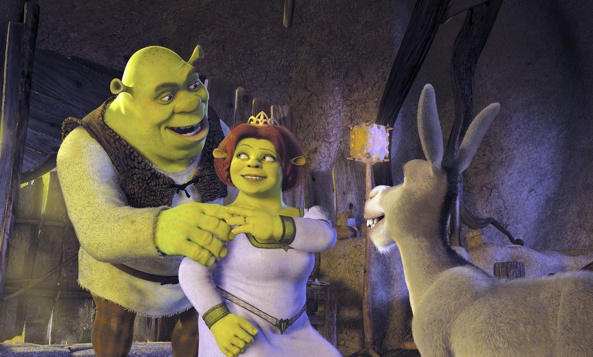 """Als nach den Flitterwochen Fionas Eltern zum Vorstellungstermin bitten, machen sich Fiona, M. und Shrek, l. auf ins Königreich """"Weit Weit Weg"""" - na... - Bildquelle: DreamWorks SKG"""