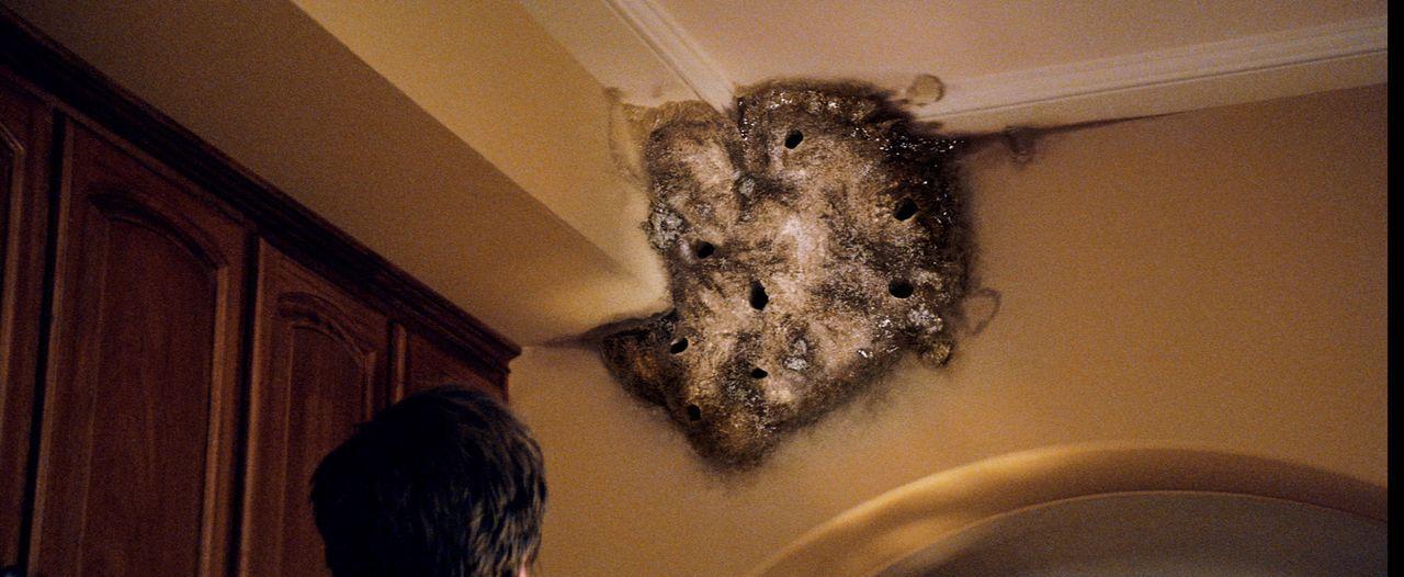 Auf einmal breitet sich Schimmel aus, Türen öffnen sich wie von Geisterhand, heftige Geräusche dringen nachts durchs Haus. Als Ben dem ganzen Spuk m... - Bildquelle: 2012 Dark Castle Holdings, LLC.