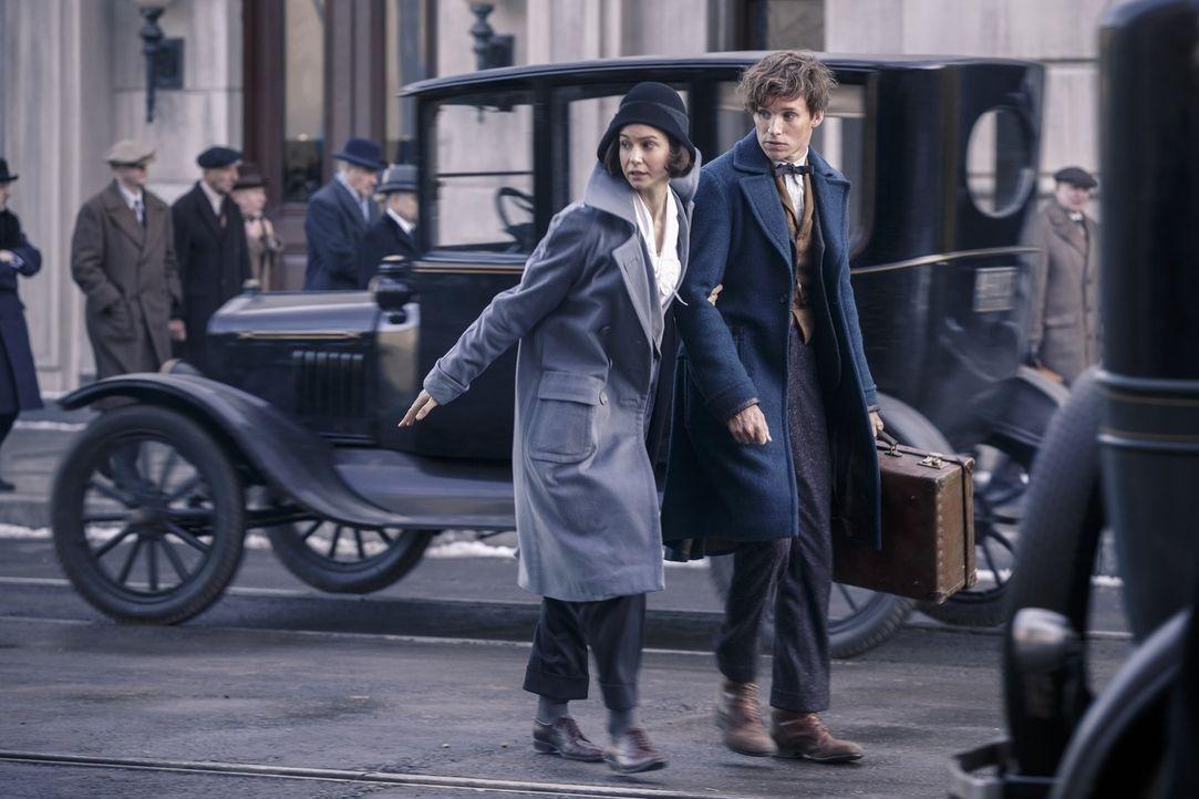 Tina Goldstein (Katherine Waterston, l.); Newt Scamander (Eddie Redmayne, r.) - Bildquelle: Warner Bros.
