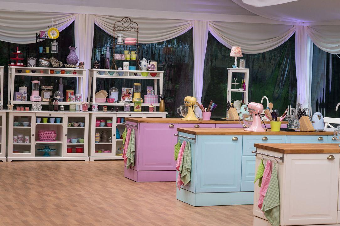 In dieser Küche müssen die Kandidaten ihr Backtalent beweisen ... - Bildquelle: Claudius Pflug SAT.1