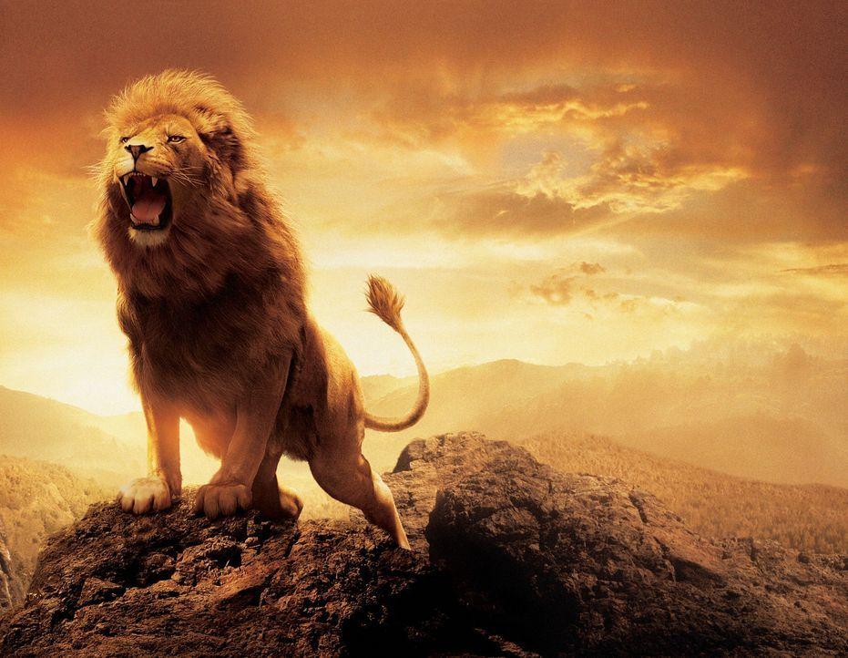 Der König von Narnia herrscht unter denkbar ungünstigen Bedingungen, denn sein kleines Reich ist einem schrecklichen Fluch unterworfen ... - Bildquelle: Disney Enterprises. All rights reserved