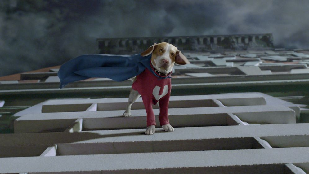 Underdog - Unbesiegt weil er fliegt - Bildquelle: Walt Disney Pictures.  All rights reserved