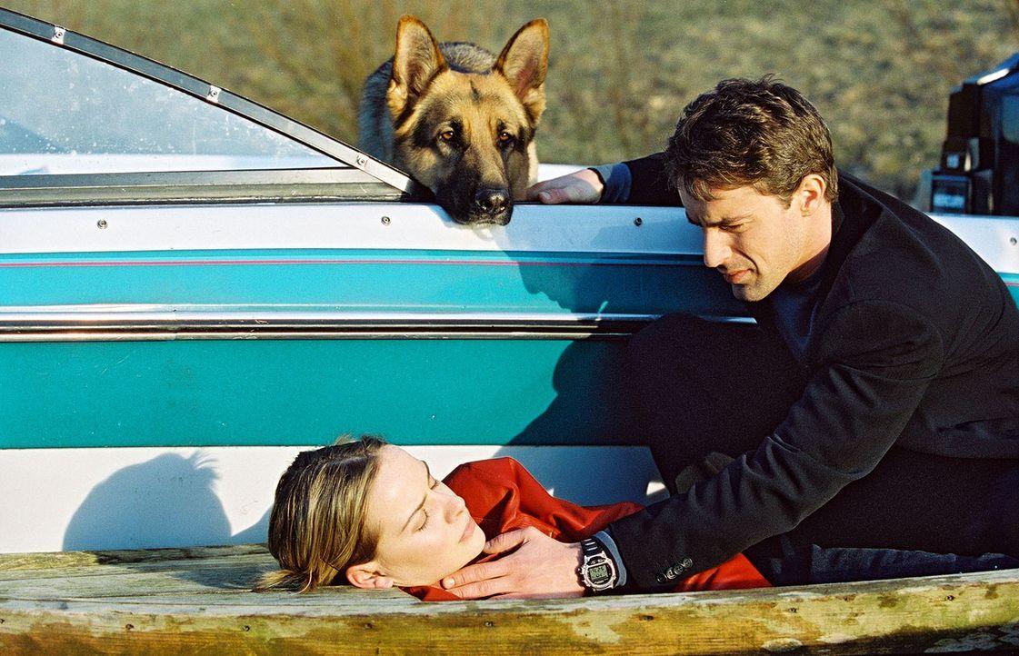 Rex und Kommissar Brandtner (Gedeon Burkhard, r.) finden Katharina Schneiders (Denise Zich, l.) leblos vor. Ist die junge Frau noch zu retten? - Bildquelle: Sat.1