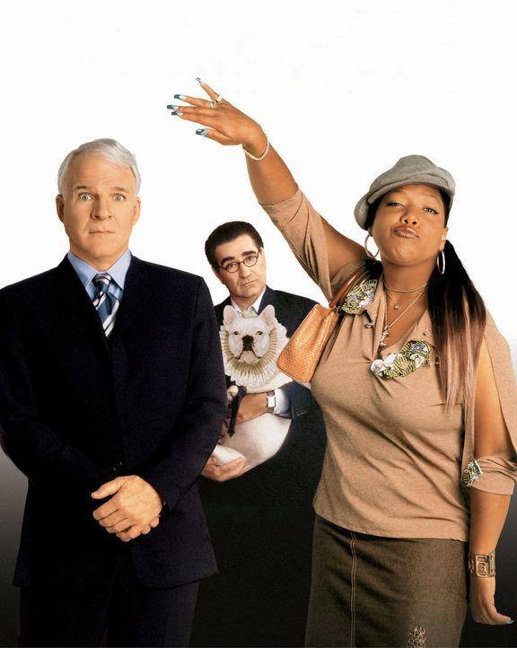 Haus über Kopf mit (v.l.n.r.) Steve Martin, Eugene Levy und Queen Latifah - Bildquelle: Touchstone Pictures
