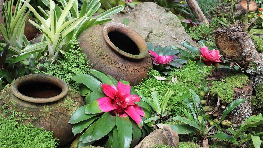 Kleiner Garten Gestaltungsideen Sat 1 Ratgeber