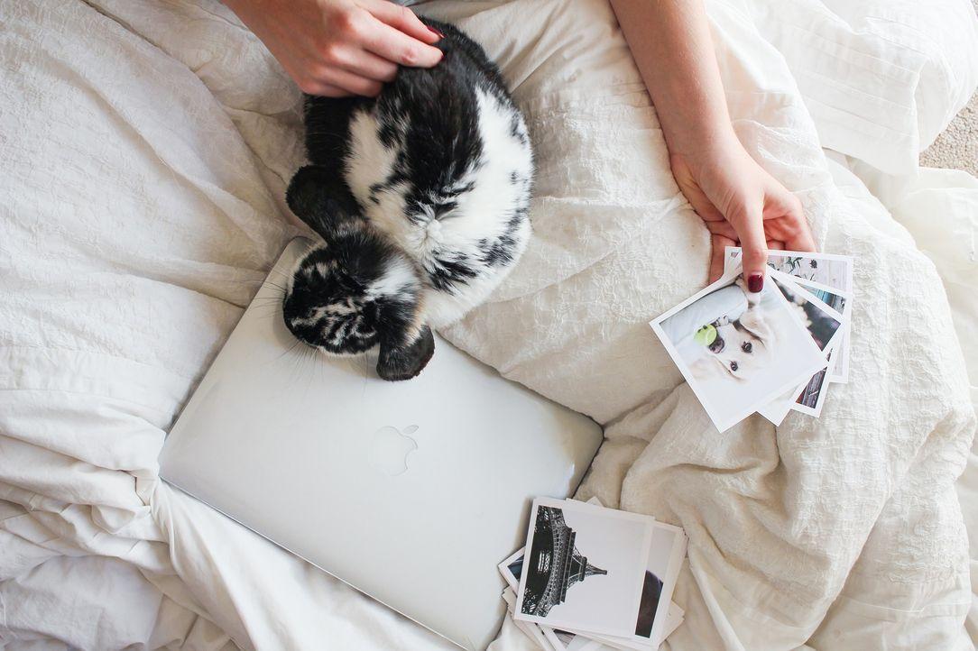 laptop-2572588_1920 - Bildquelle: Pixabay