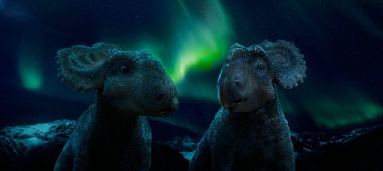 Eigentlich darf die Pachyrhinosaurus Dame Juniper (l.) nicht mit Männchen aus anderen Herden reden, aber der besondere Patchi (r.) verdreht ihr den... - Bildquelle: 2013 Constantin Film Verleih GmbH.