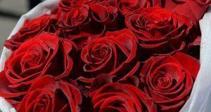 Heiratsantrag-Blumen-1-dpa