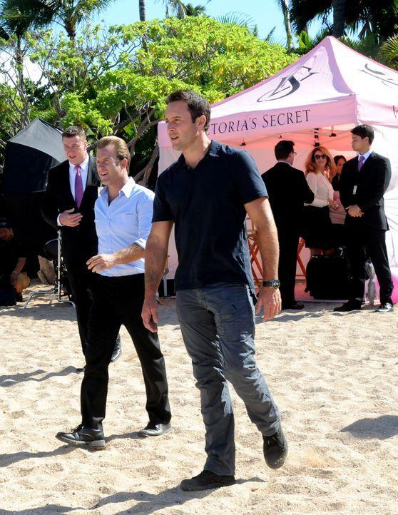 Während Steve (Alex O'Loughlin, vorne r.) versucht, eine Banküberfall aufzuklären, hat Danny (Scott Caan, vorne l.) die Aufgabe, die schönsten F... - Bildquelle: 2012 CBS Broadcasting, Inc. All Rights Reserved.