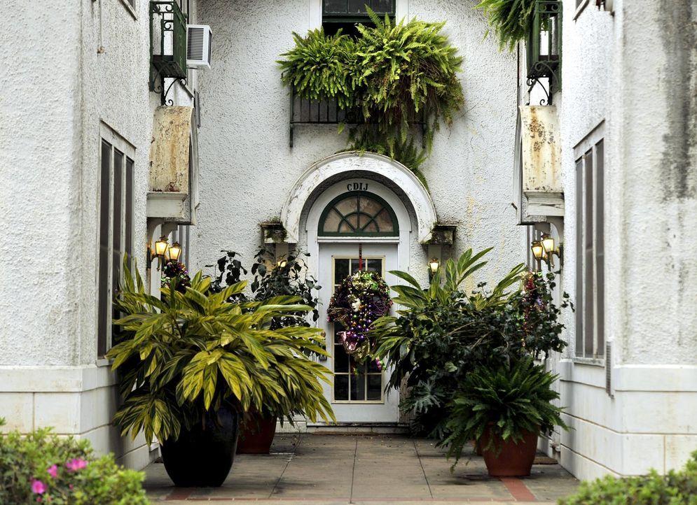 New-Orleans-05-AFP - Bildquelle: AFP