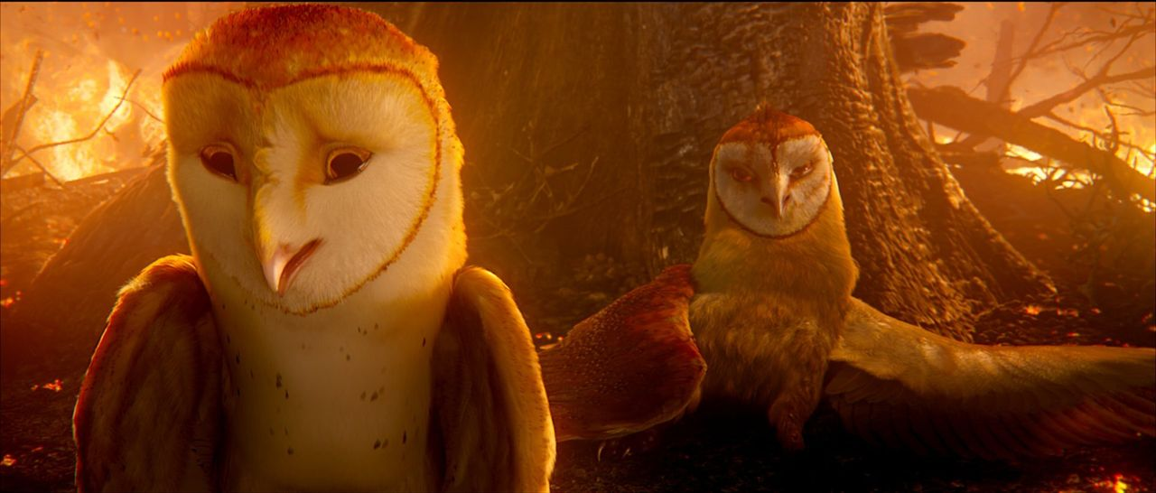 Soren (l.) und Kludd (r.) haben einen folgenschweren Streit: Die beiden Brüder fallen aus dem Nest und dabei direkt in die Klauen der Bösen ... - Bildquelle: Warner Brothers