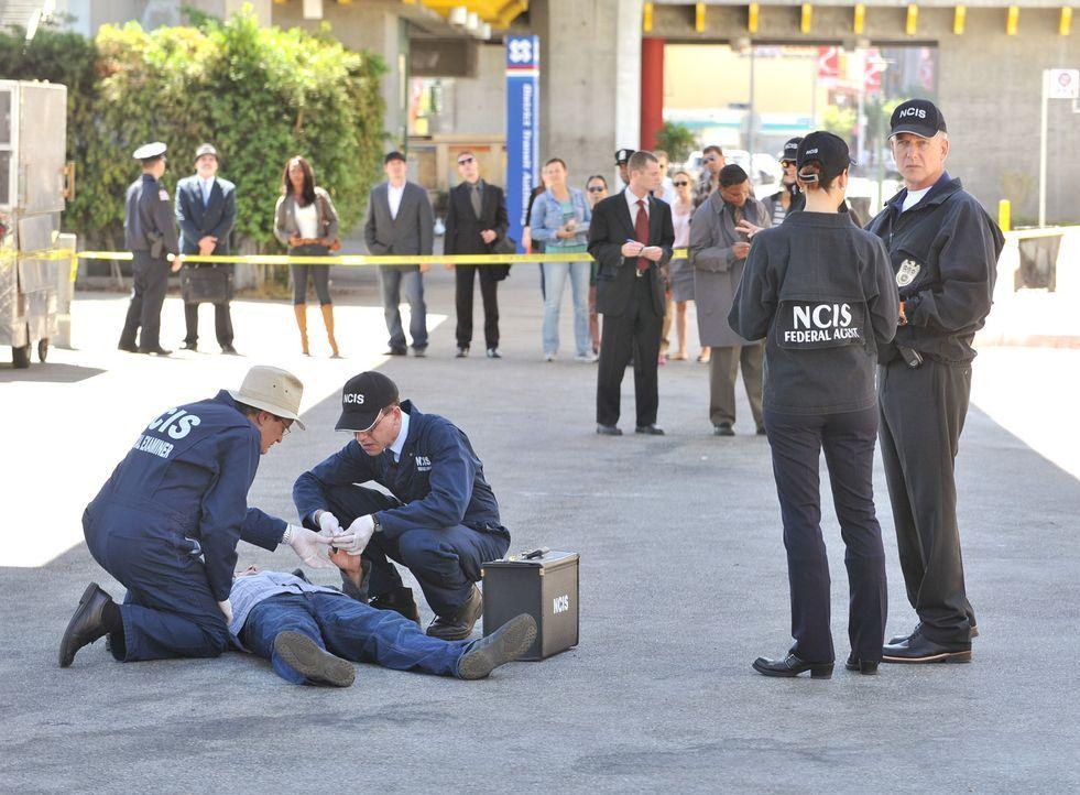 Ein neuer Mordfall beschäftigt Ducky (David McCallum, vorne l.), Jimmy (Brian Dietzen, vorne M.), Ziva (Cote de Pablo, 2.v.r.) und Gibbs (Mark Harmo... - Bildquelle: CBS Television