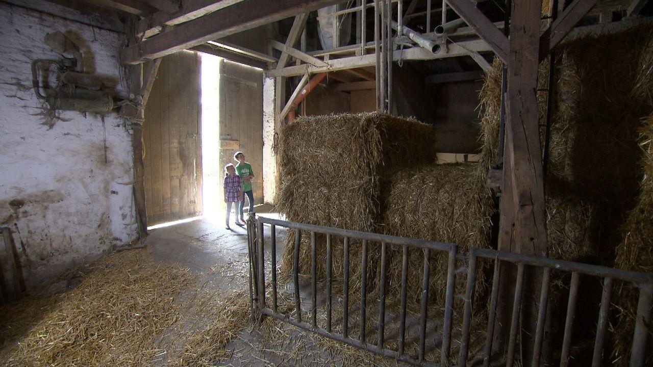 Die 39-jährige Julia macht gemeinsam mit ihren beiden Kindern und ihrem neuen Freund Holger Urlaub auf einem Bauernhof. Julia ist bis über beide O... - Bildquelle: SAT.1