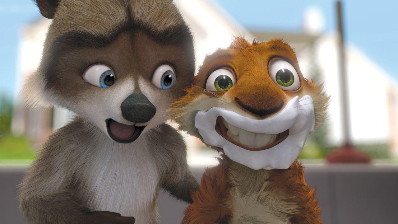 Kann Richie (l.) das hyperaktive Eichhörnchen Hammy (r.) von seinem nicht ganz ungefährlichen Plan überzeugen? - Bildquelle: United International Pictures
