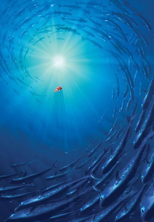 Der ängstliche Marlin steht vor einer schier unlösbaren Aufgabe: Um Nemo im Ozean voller Gefahren zu suchen und zu finden, muss er alles riskieren ? - Bildquelle: Walt Disney Pictures