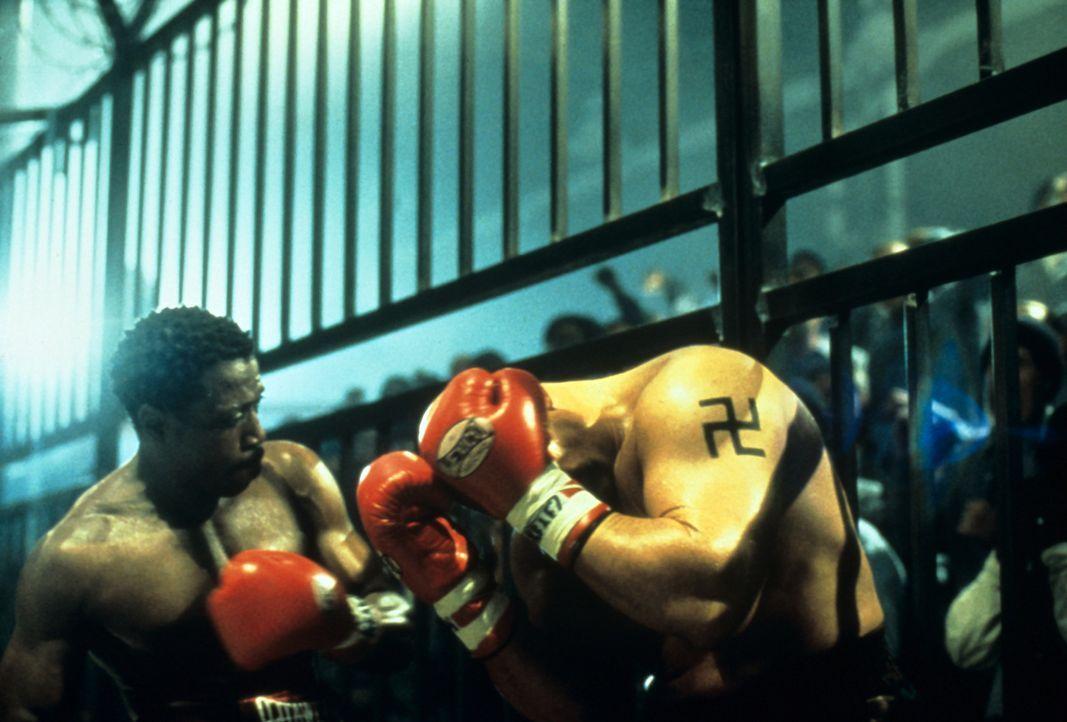 Es kommt zum Showdown der Giganten im Ring: Monroe (Wesley Snipes, l.) ... - Bildquelle: Miramax Films