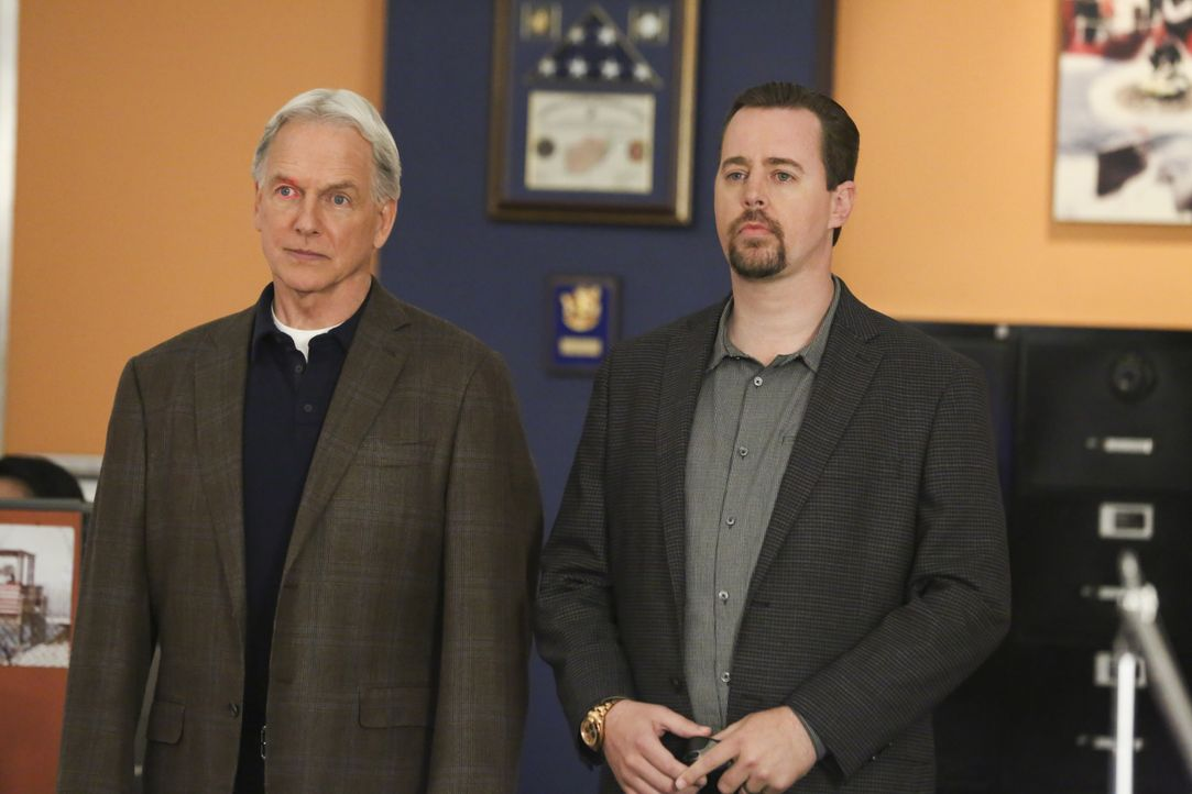 Leroy Jethro Gibbs (Mark Harmon, l.); Timothy McGee (Sean Murray, r.) - Bildquelle: Michael Yarish 2019 CBS Broadcasting, Inc. All Rights Reserved / Michael Yarish