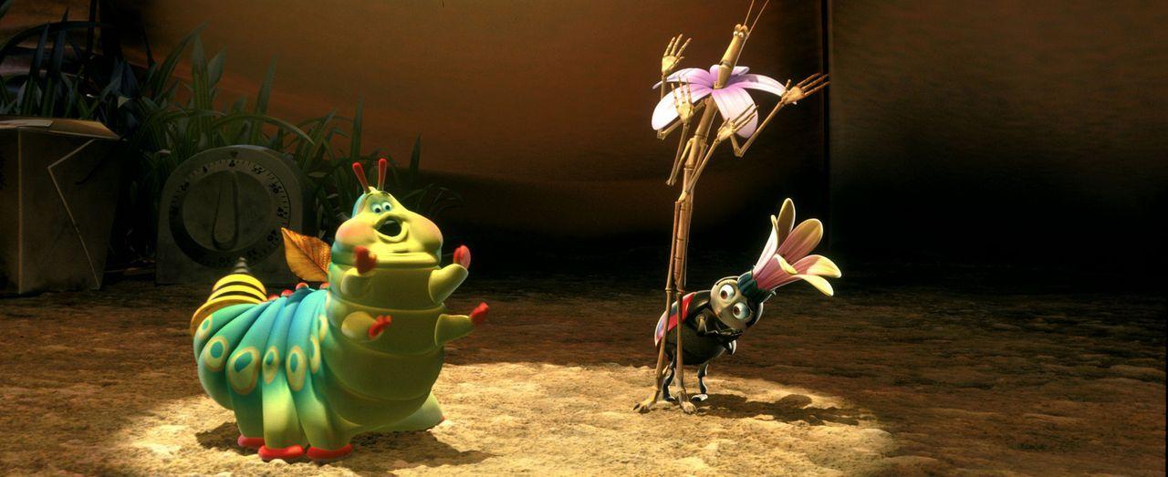 """Der Insektenzirkus gibt eine seiner legendären Vorstellungen: (v.l.n.r.) Gustl, Slim und Franzi sind die """"Stars"""" in der Manege ... - Bildquelle: Disney/Pixar"""