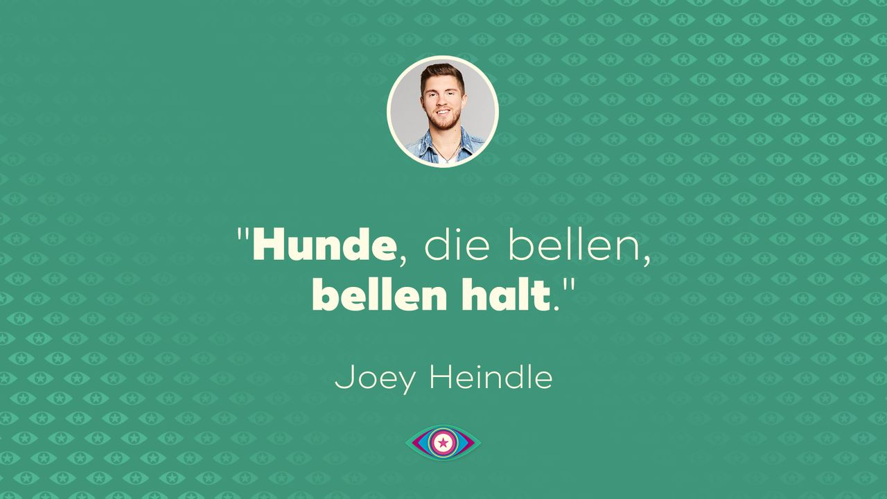 Promi Big Brother 2019: Tag 9 - Joey Hunde bellen