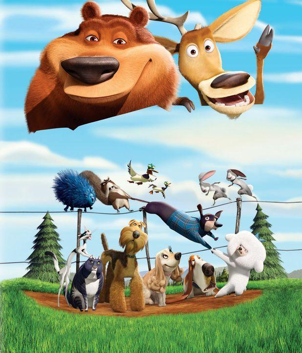 Ein aufregendes Abenteuer wartet auf Hirsch Elliot (oben r.), Grizzlie Boog (oben l.) und ihre Freunde. - Bildquelle: 2008 Sony Pictures Animation Inc. All Rights Reserved.