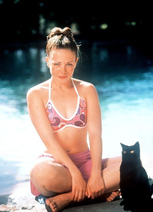 Ungeahnter Besuch: Kater Salem (r.) reist heimlich mit seiner Herrin Sabrina (Melissa Joan Hart, l.) nach Australien. Er ist auf der Suche nach der... - Bildquelle: American Broadcasting Company (ABC)
