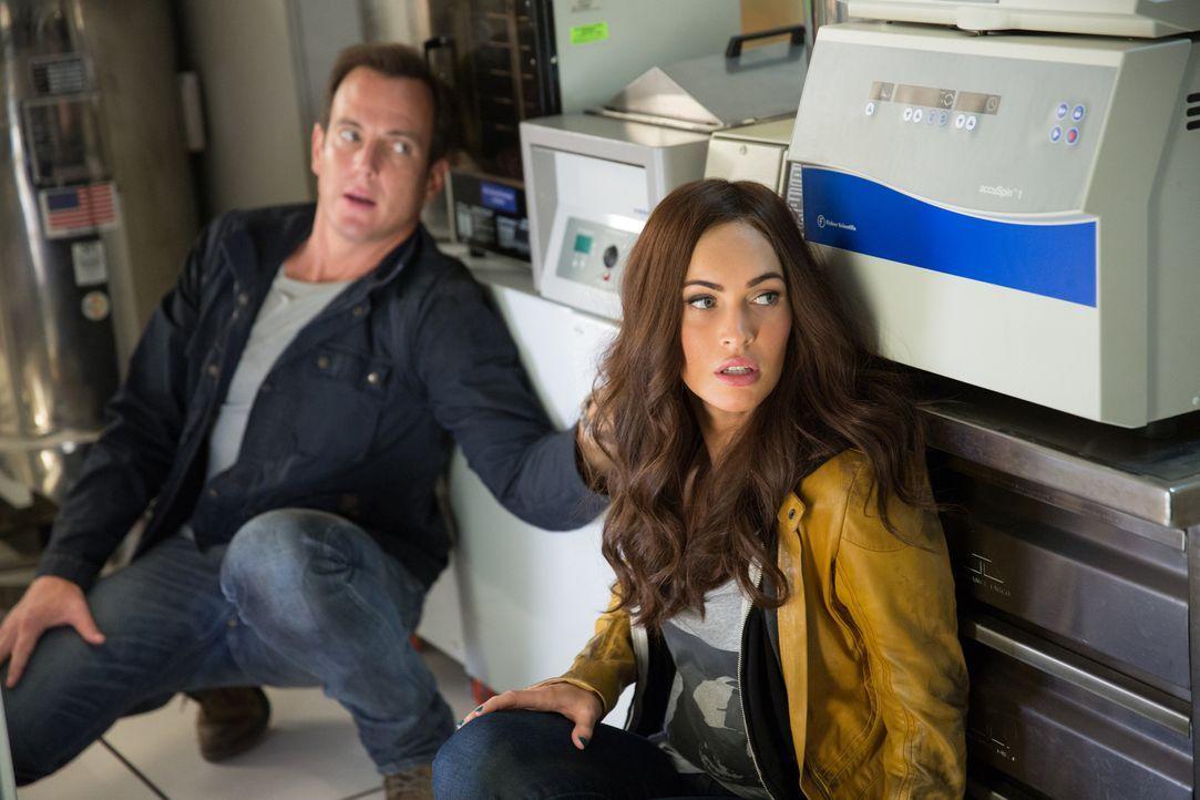 Die Reporterin April (Megan Fox, r.) und ihr Kameramann Vernon (Will Arnett, l.) drehen normalerweise eher unspektakuläre TV-Beiträge. Deshalb hat s... - Bildquelle: MMXIV Paramount Pictures Corporation. All Rights Reserved.