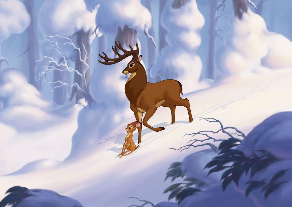 Gemeinsam mit seinen Freunden Klopfer und Blume versucht Bambi (l.) genauso mutig zu sein wie sein Vater (r.) und schlittert dabei von einem Abenteu... - Bildquelle: Disney  All rights reserved