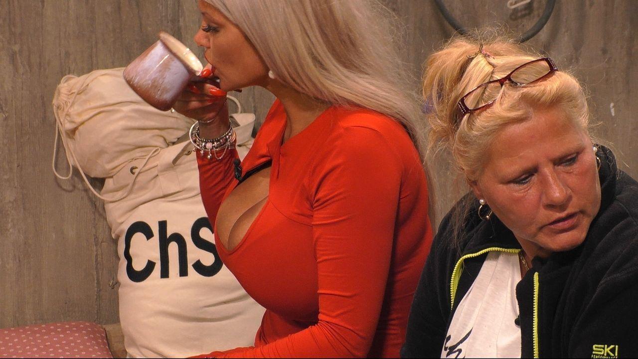 Keine Freundinnen: Sophia Vegas (li.) zeigt Silvia Wollny die kalte Schulter. - Bildquelle: Sat.1