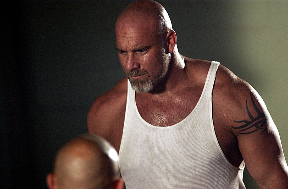 Eigentlich verstehen sich Burk (Bill Goldberg) und Twitch nicht besonders, jetzt allerdings verbindet sie ein gemeinsames Interesse. Denn bei einem... - Bildquelle: 2007 Sony Pictures Home Entertainment Inc. All Rights Reserved.