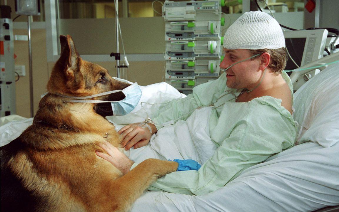 Rex und der Mann ohne Gedächtnis (Janek Rieke) auf der Intensivstation. - Bildquelle: Sat.1