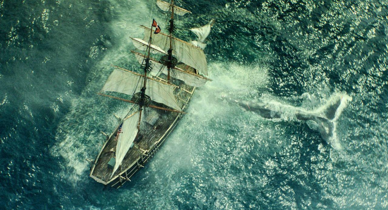 Angetrieben von einem unheimlichen Vergeltungsdrang terrorisiert ein riesiger Wal die Besatzung des Walfängerschiffs Essex, doch damit ist der Alptr... - Bildquelle: Warner Bros.
