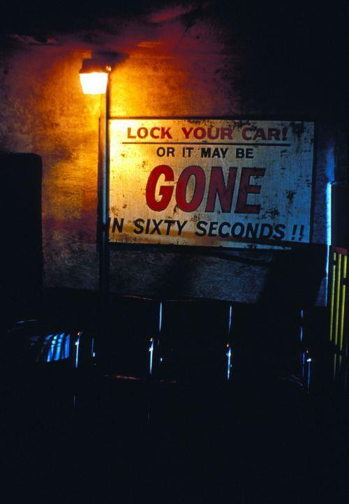 ...wie wahr, wenn Memphis und seine Bande in der Nähe sind ... - Bildquelle: Merrick Martin Touchstone Pictures