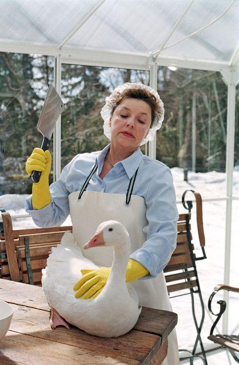 Henriette, die Lieblingsgans von Rudi, soll zu Weihnachten für den Staatsminister Helfer geschlachtet werden. Dieses Jahr muss das Weihnachtsessen... - Bildquelle: Walter Wehner Sat.1