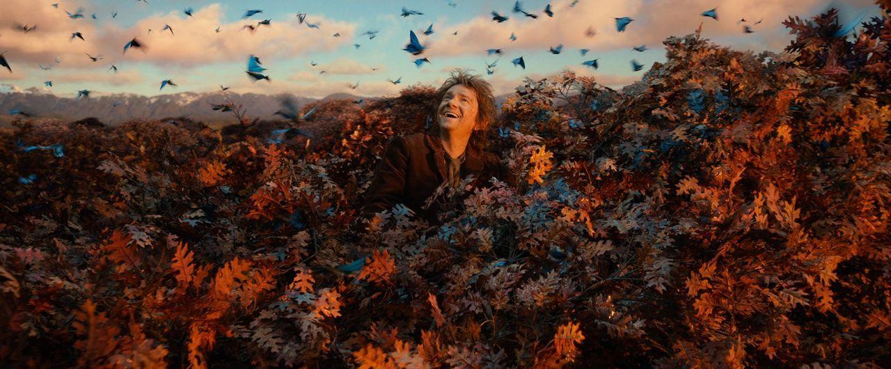 Auf den Baumkronen sitzend, schaut der Finsterwald für Bilbo (Martin Freeman) gar nicht mehr so düster aus. Vielleicht schaffen er und die Zwerge es... - Bildquelle: 2013 METRO-GOLDWYN-MAYER PICTURES INC. and WARNER BROS. ENTERTAINMENT INC.