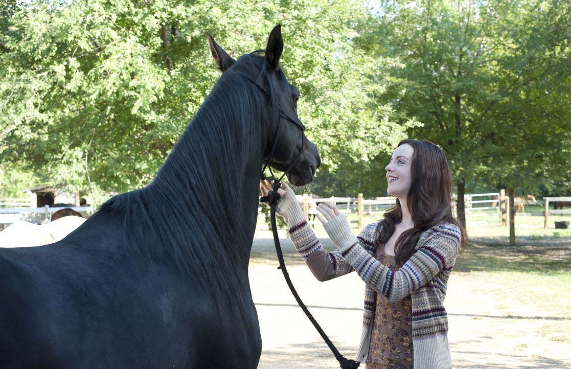 Nachdem Kellys (Kacey Rohl) Vater bei einem tragisches Autounfall ums Leben gekommen ist, hängt die Existenz der Pferdezucht am seidenen Faden. Doch... - Bildquelle: 2012 Twentieth Century Fox Film Corporation. All rights reserved.