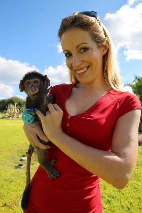 Andrea Kaiser besucht die Harnas Wildlife Foundation in Namibia - Ein Waisenhaus für afrikanische Wildtiere. Dort trifft sie auf 3 Monate alte Pavia... - Bildquelle: SAT.1
